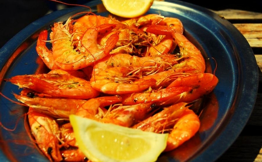 Shrimp from the nearby Sea (by Let Ideas Compete)